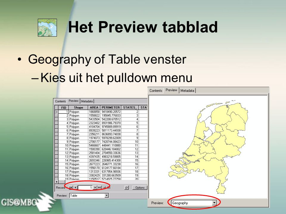 Het Preview tabblad Geography of Table venster