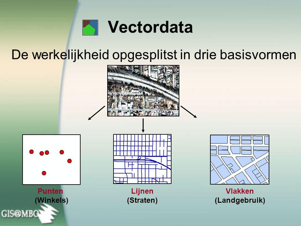 Vectordata De werkelijkheid opgesplitst in drie basisvormen Lijnen