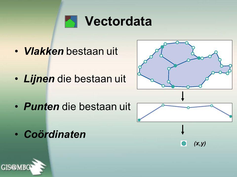 Vectordata Vlakken bestaan uit Lijnen die bestaan uit