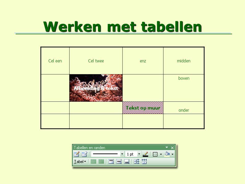 Werken met tabellen Afbeelding & tekst Tekst op muur Cel een Cel twee