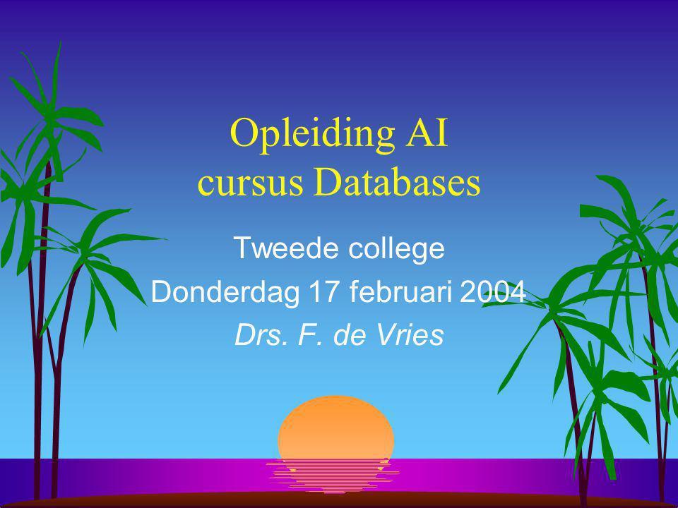 Opleiding AI cursus Databases