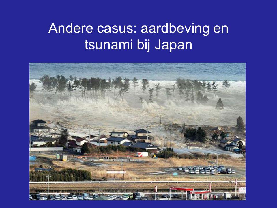 Andere casus: aardbeving en tsunami bij Japan