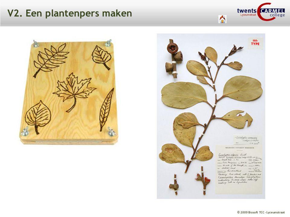 V2. Een plantenpers maken