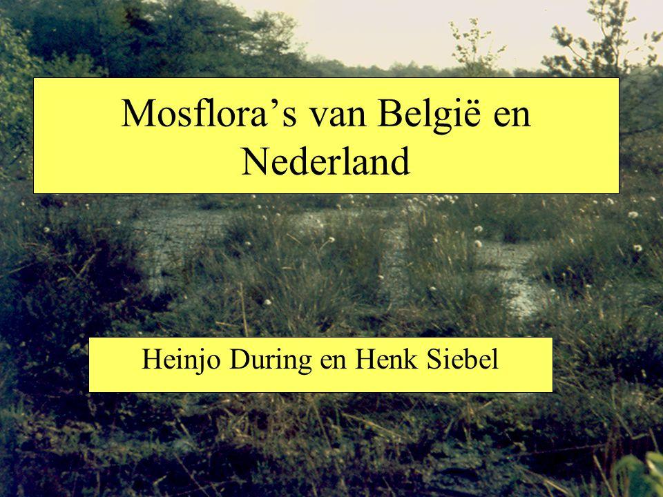 Mosflora's van België en Nederland