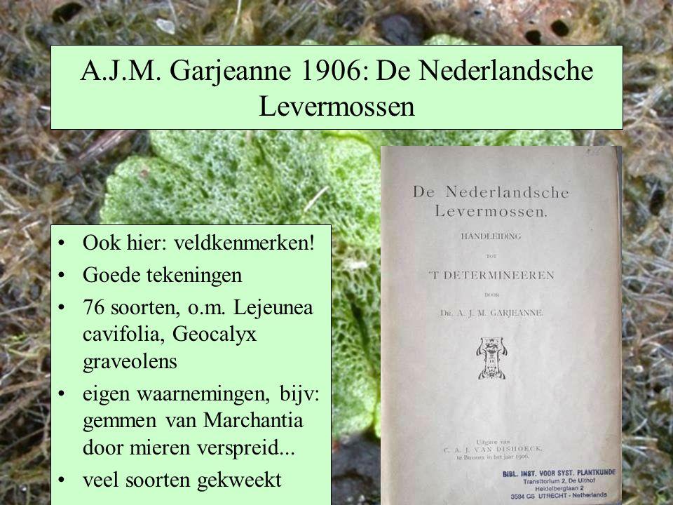 A.J.M. Garjeanne 1906: De Nederlandsche Levermossen