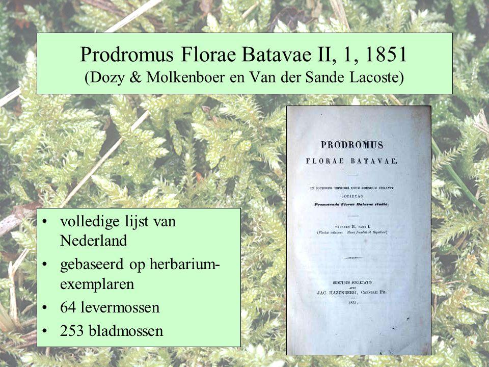 Prodromus Florae Batavae II, 1, 1851 (Dozy & Molkenboer en Van der Sande Lacoste)