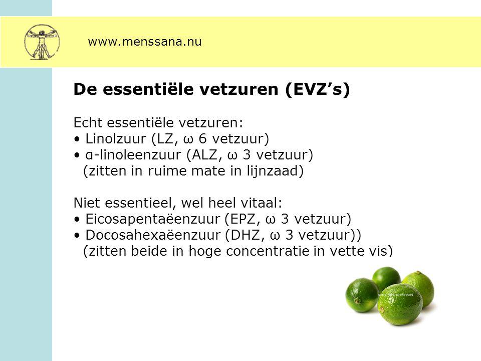 De essentiële vetzuren (EVZ's)