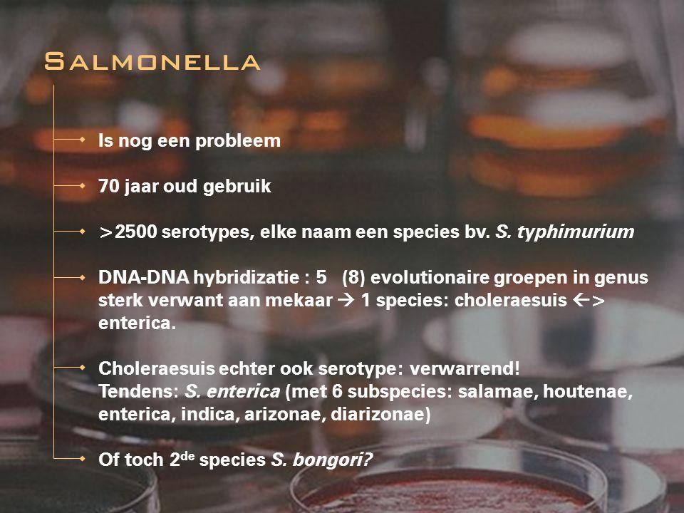 Salmonella Is nog een probleem 70 jaar oud gebruik