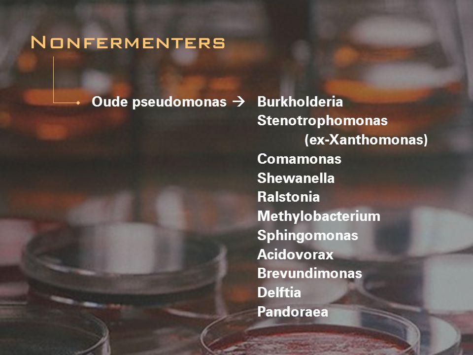 Nonfermenters Oude pseudomonas  Burkholderia