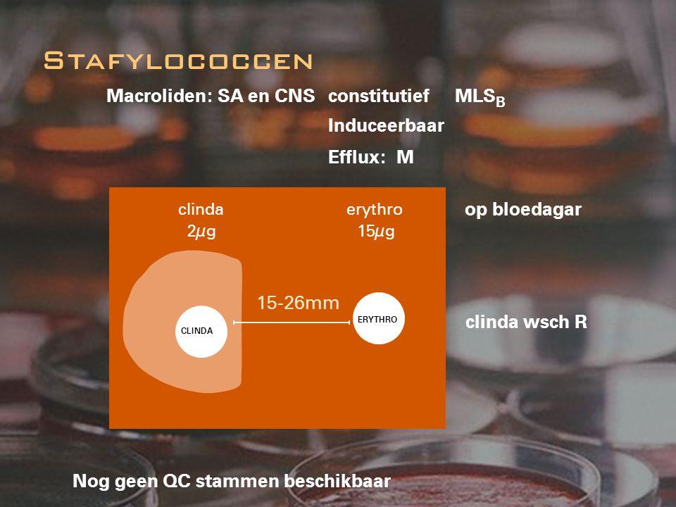 Stafylococcen Macroliden: SA en CNS constitutief MLSB Induceerbaar