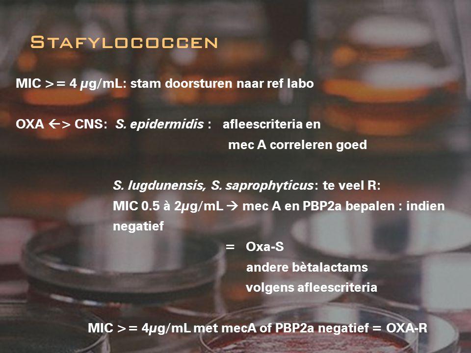 Stafylococcen MIC >= 4 µg/mL: stam doorsturen naar ref labo