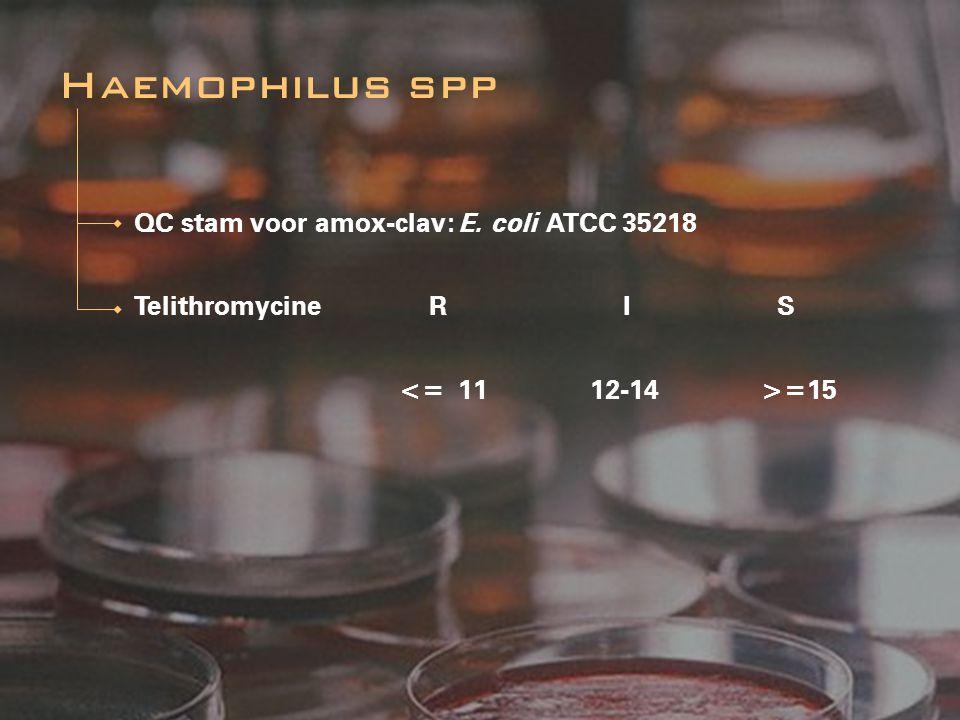 Haemophilus spp QC stam voor amox-clav: E. coli ATCC 35218
