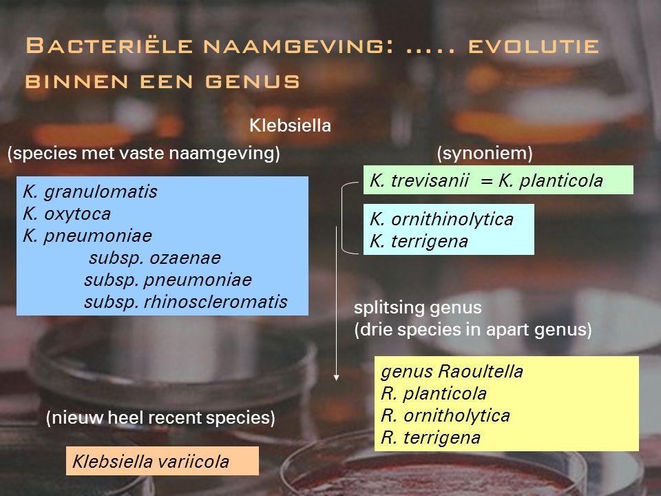 Bacteriële naamgeving: ….. evolutie binnen een genus
