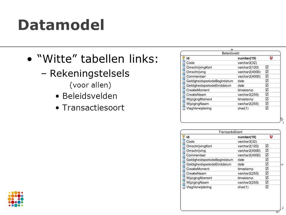 Datamodel Witte tabellen links: Rekeningstelsels Beleidsvelden