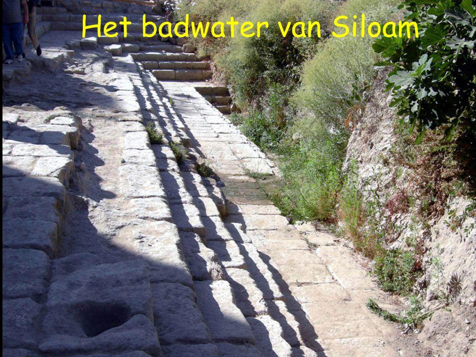 Het badwater van Siloam
