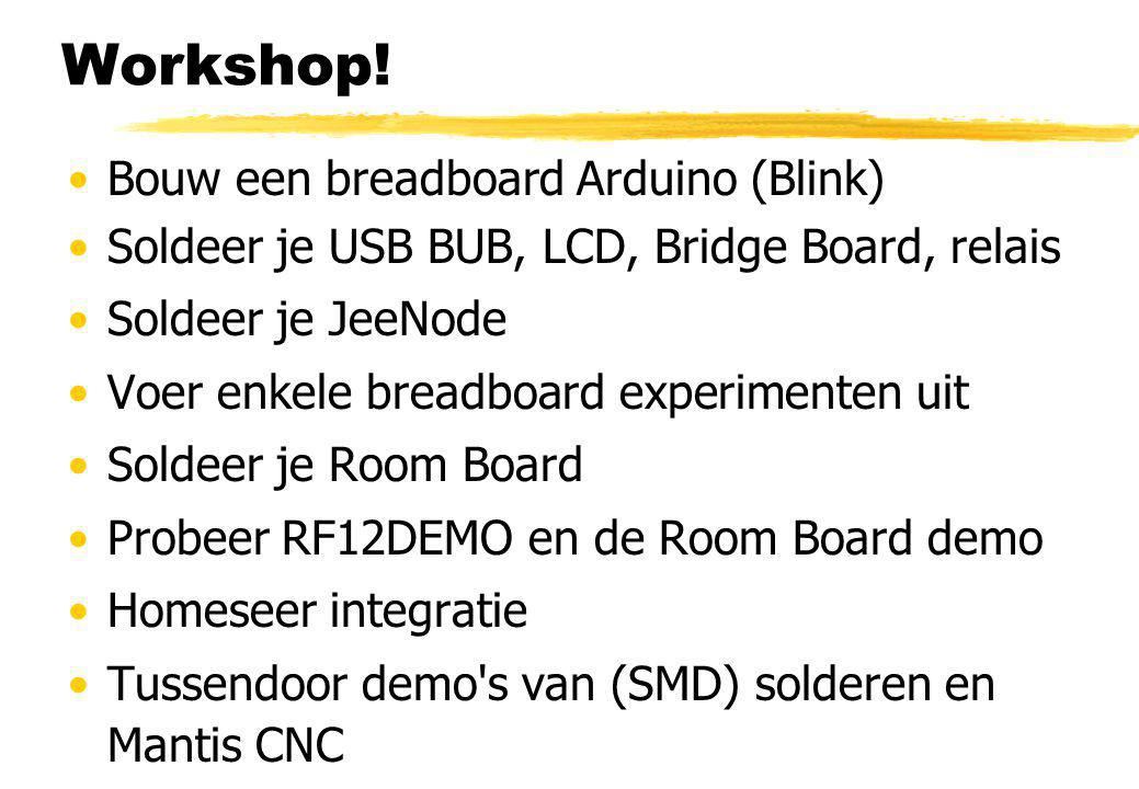 Workshop! Bouw een breadboard Arduino (Blink)