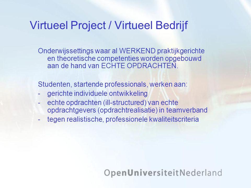 Virtueel Project / Virtueel Bedrijf