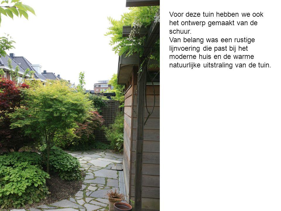 Esdoorns in Bleiswijk Een tuin met inspiratie uit het oosten ...