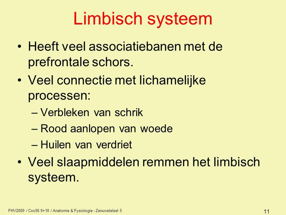 Limbisch systeem Heeft veel associatiebanen met de prefrontale schors.