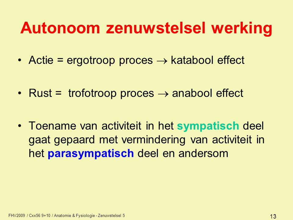 Autonoom zenuwstelsel werking