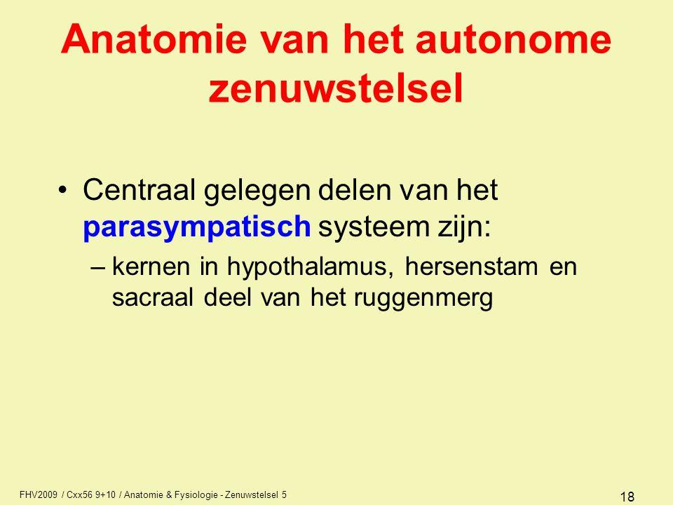 Anatomie van het autonome zenuwstelsel