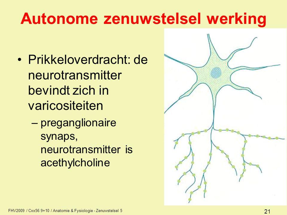 Autonome zenuwstelsel werking