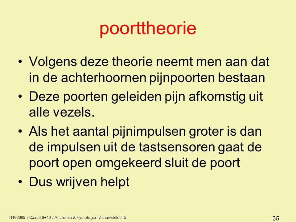 poorttheorie Volgens deze theorie neemt men aan dat in de achterhoornen pijnpoorten bestaan. Deze poorten geleiden pijn afkomstig uit alle vezels.