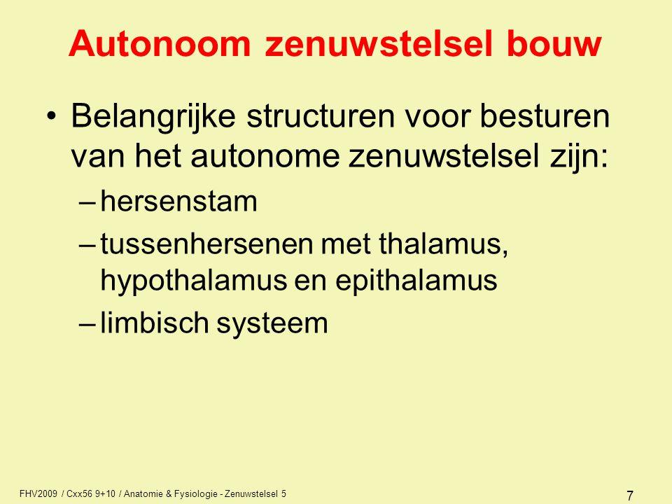 Autonoom zenuwstelsel bouw