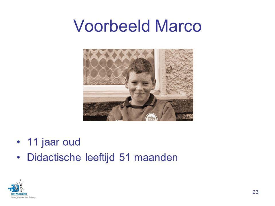 Voorbeeld Marco 11 jaar oud Didactische leeftijd 51 maanden