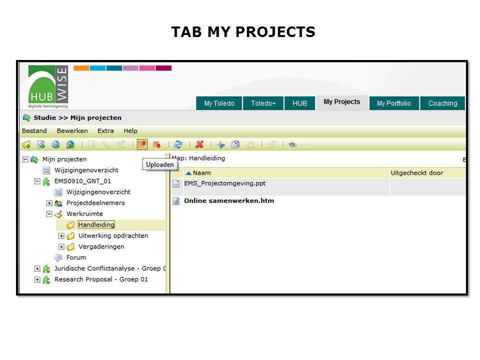 TAB MY PROJECTS