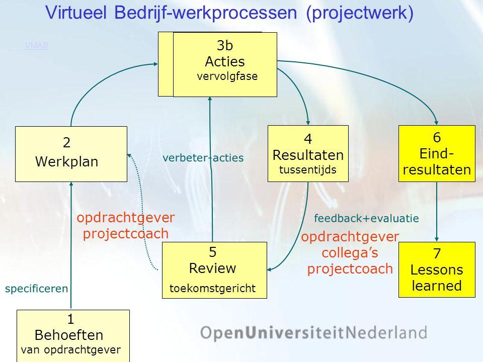 Virtueel Bedrijf-werkprocessen (projectwerk)