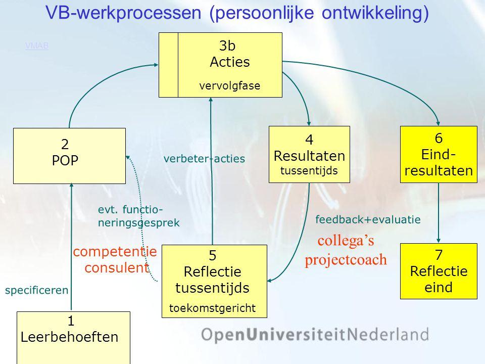 VB-werkprocessen (persoonlijke ontwikkeling)