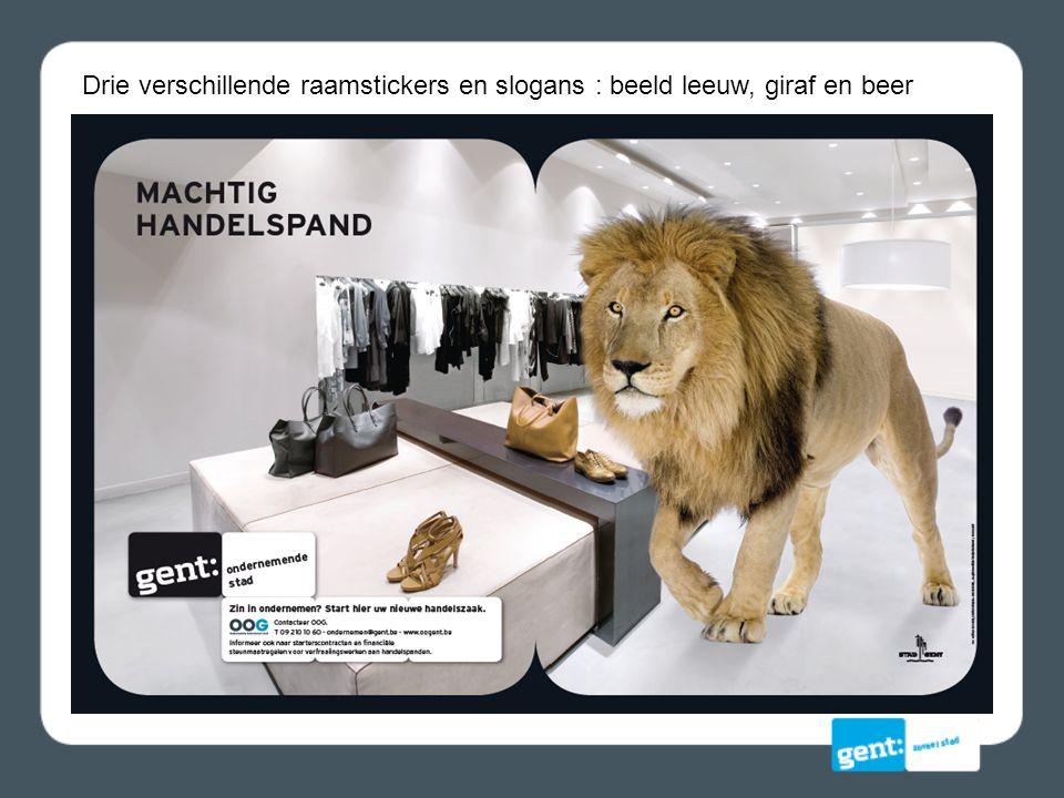 Drie verschillende raamstickers en slogans : beeld leeuw, giraf en beer