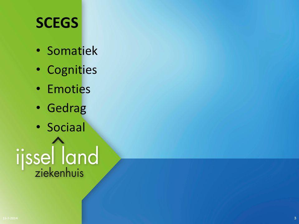 SCEGS Somatiek Cognities Emoties Gedrag Sociaal 4-4-2017 3