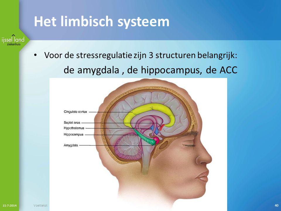 Het limbisch systeem de amygdala , de hippocampus, de ACC