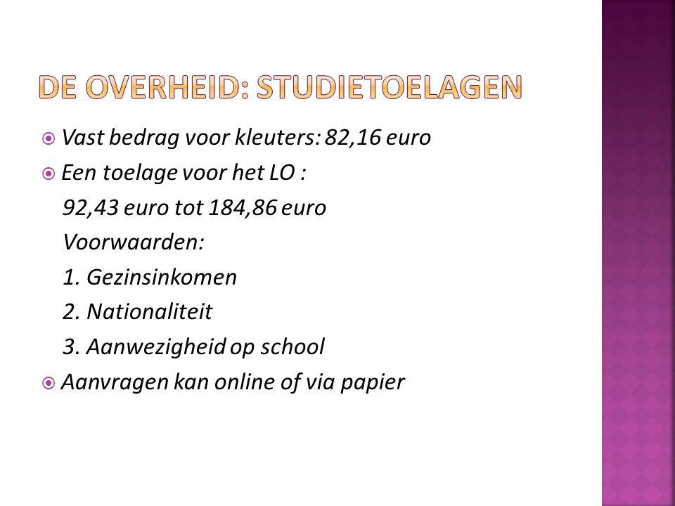 De overheid: studietoelagen