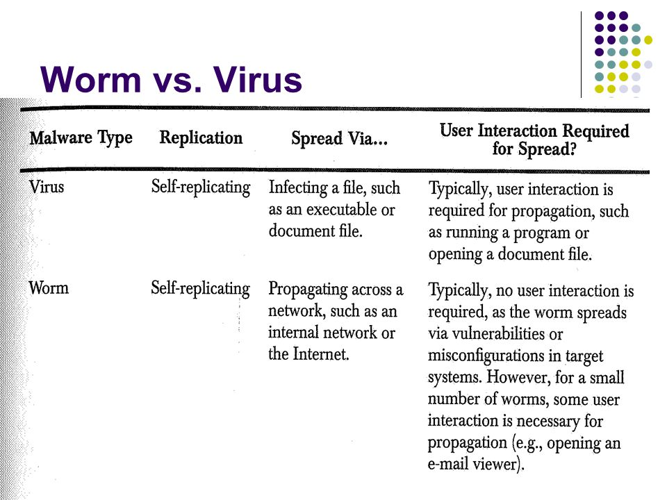 Worm vs. Virus