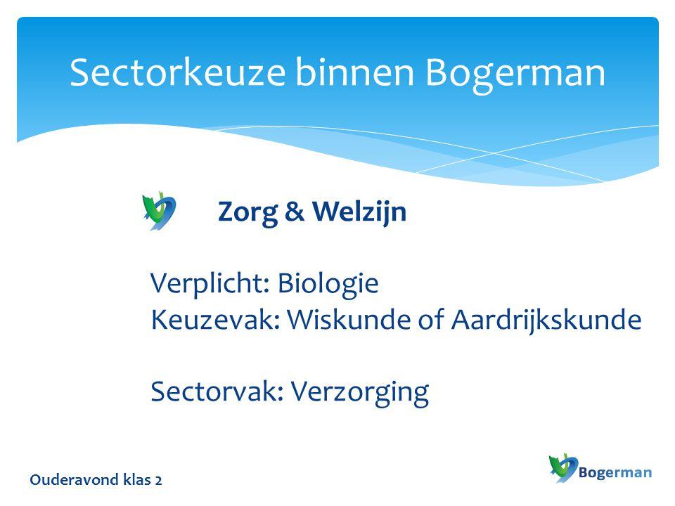 Sectorkeuze binnen Bogerman