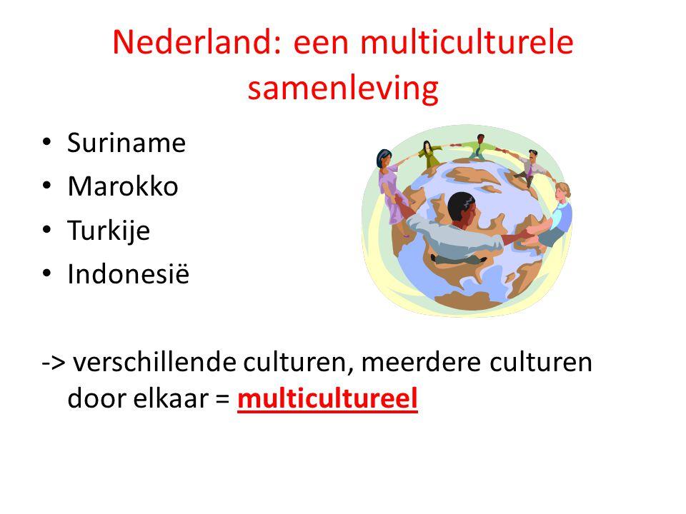 Nederland: een multiculturele samenleving