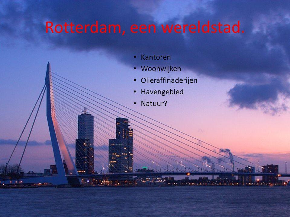 Rotterdam, een wereldstad.