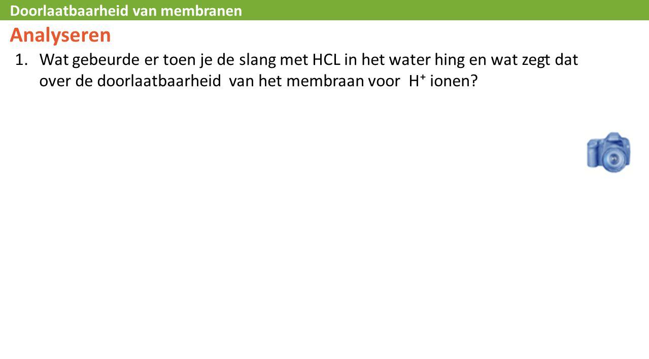Analyseren Wat gebeurde er toen je de slang met HCL in het water hing en wat zegt dat over de doorlaatbaarheid van het membraan voor H⁺ ionen