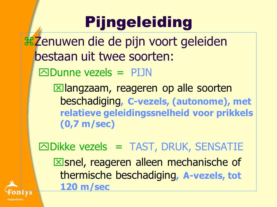 Pijngeleiding Zenuwen die de pijn voort geleiden bestaan uit twee soorten: Dunne vezels = PIJN.