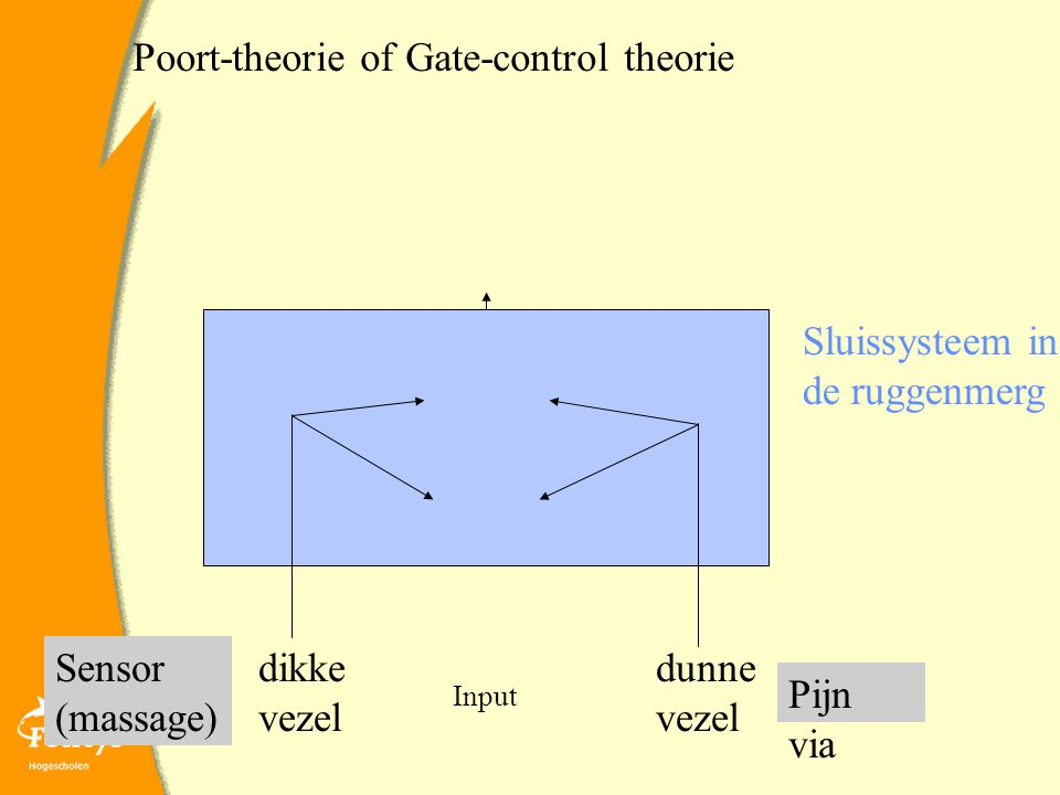 Poort-theorie of Gate-control theorie