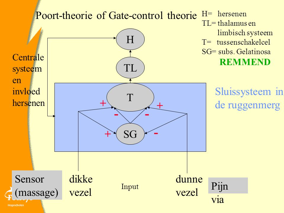 - - - Poort-theorie of Gate-control theorie H TL T Sluissysteem in