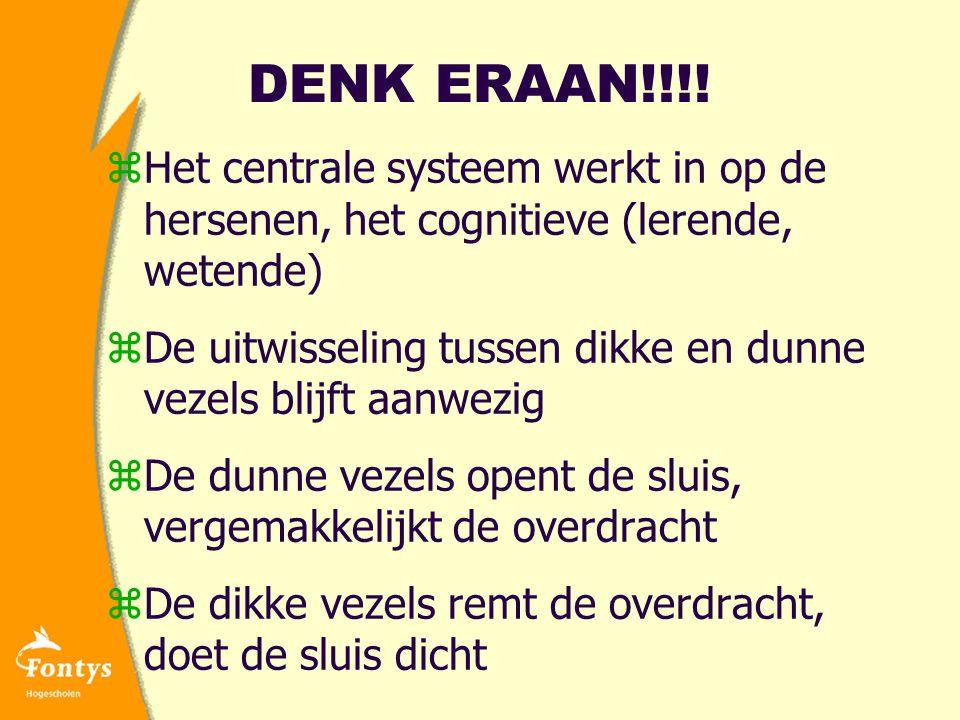 DENK ERAAN!!!! Het centrale systeem werkt in op de hersenen, het cognitieve (lerende, wetende)