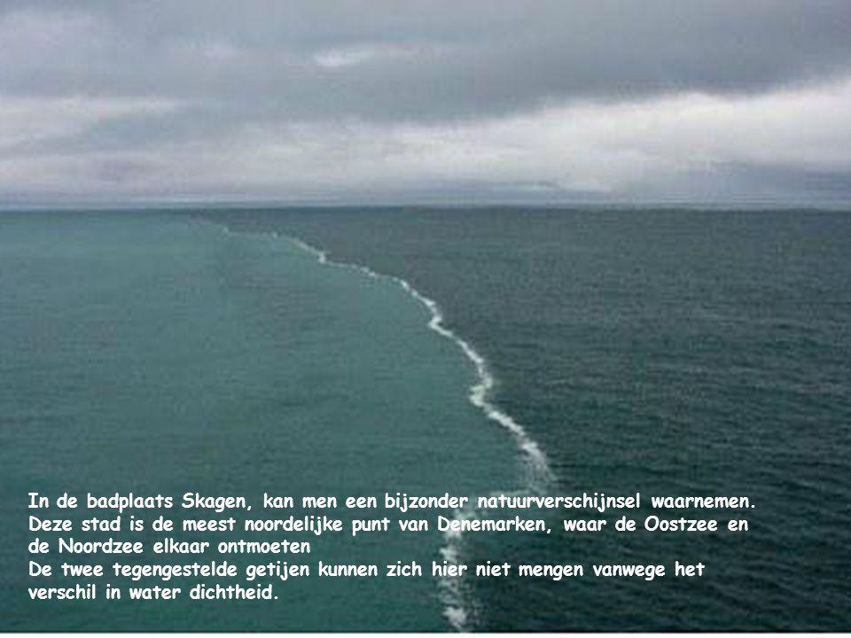In de badplaats Skagen, kan men een bijzonder natuurverschijnsel waarnemen.
