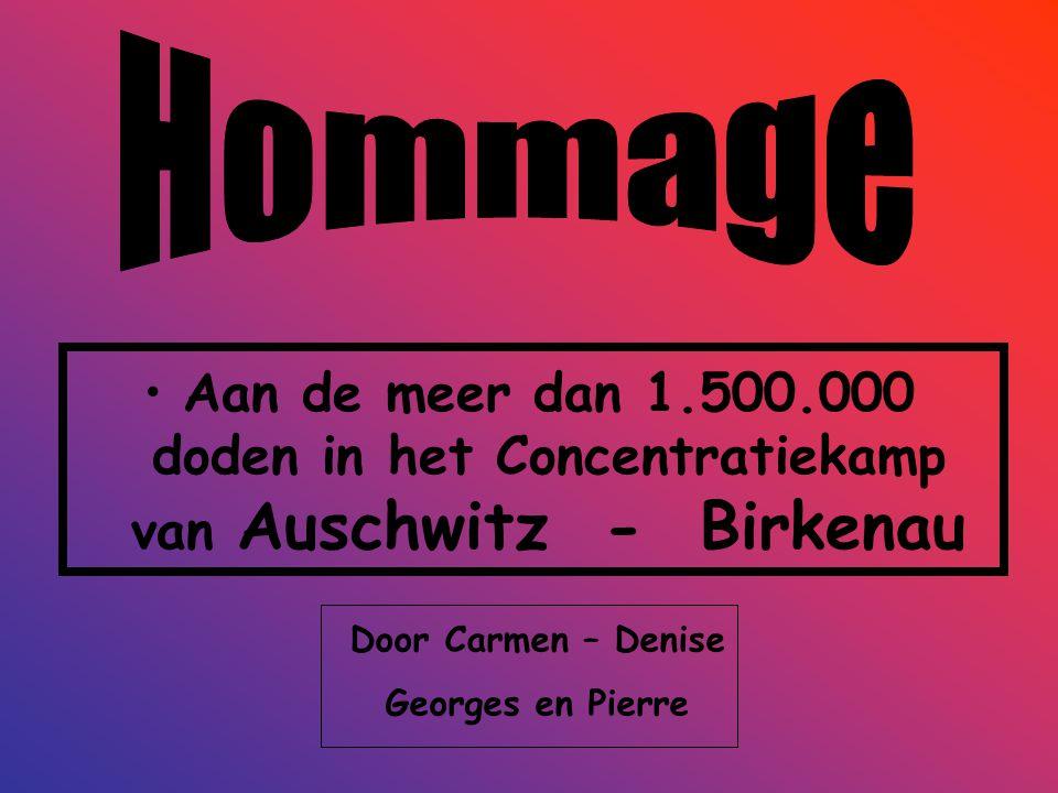 Hommage Aan de meer dan 1.500.000 doden in het Concentratiekamp van Auschwitz - Birkenau. Door Carmen – Denise.