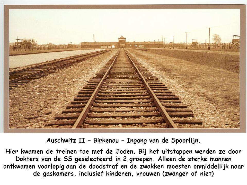 Auschwitz II – Birkenau – Ingang van de Spoorlijn.