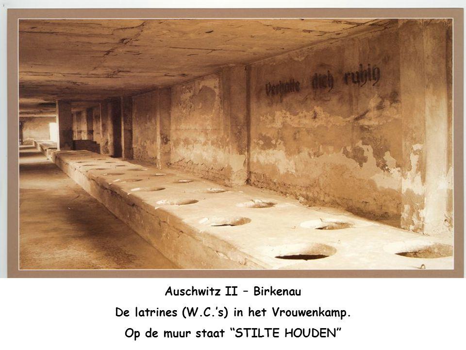 Auschwitz II – Birkenau De latrines (W.C.'s) in het Vrouwenkamp.