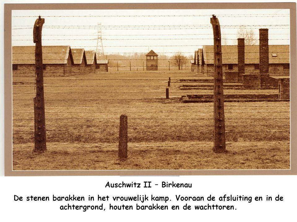Auschwitz II – Birkenau